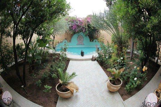 Riad Norma: garden & swimming pool