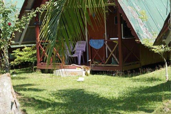 Puteri Salang Inn: Monkeys roaming between the chalets.