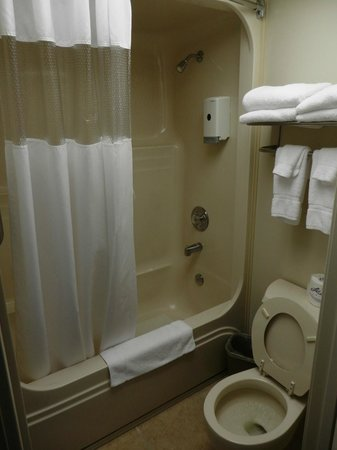 Branson Yellow Rose Inn and Suites: 5