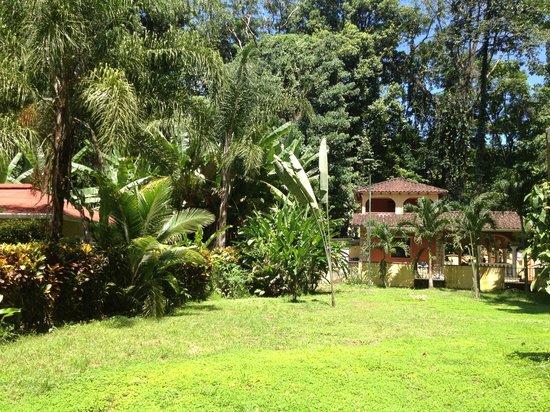 La Perla del Caribe: The view from our Villa