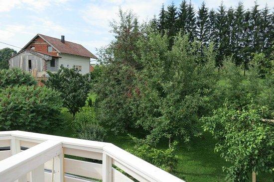 House Zupan: Garden