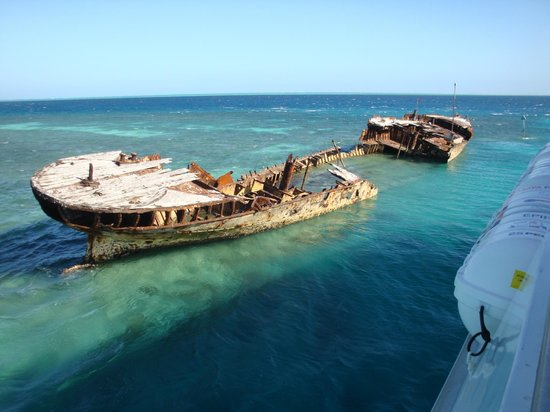 Heron Island Australia Reviews