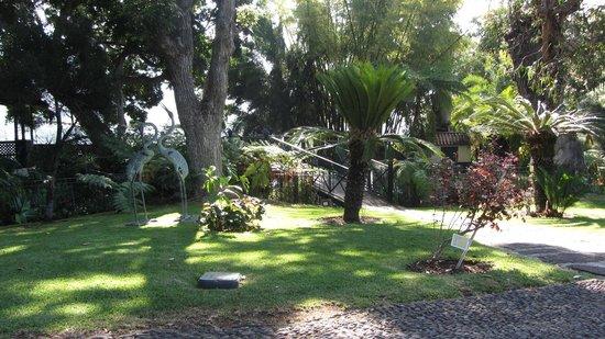 Quinta Jardins do Lago: de vijver in de tuin