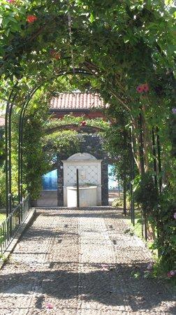 Quinta Jardins do Lago: Een van de paadjes naar het zwembad