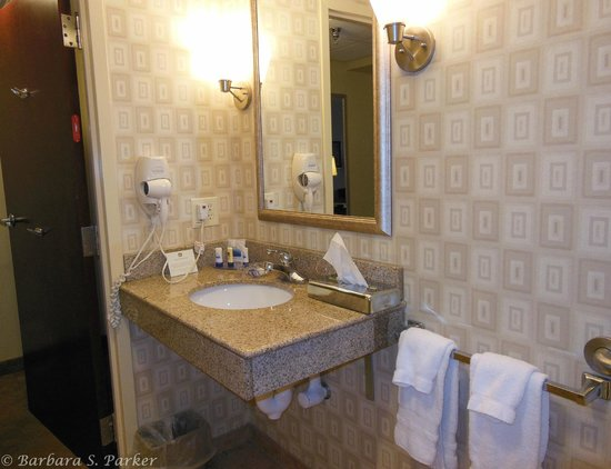 BEST WESTERN PLUS Waynesboro Inn & Suites Conference Center: Bathroom sink area