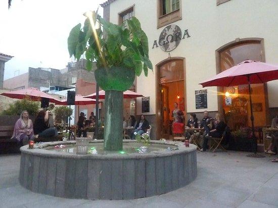 Agora Bar & Cafe, Puerto de la Cruz - Fotos y Restaurante Opiniones ...