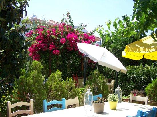 Villa Mertiza : bloemenpracht tuin