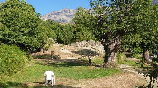 Camping U Monte Cintu : très beau