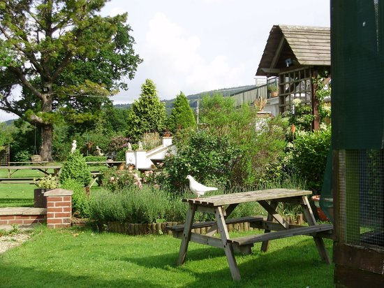 Lavender House Hotel: Part of the garden
