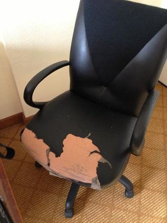 Residence Inn Tampa Downtown: torn up chair