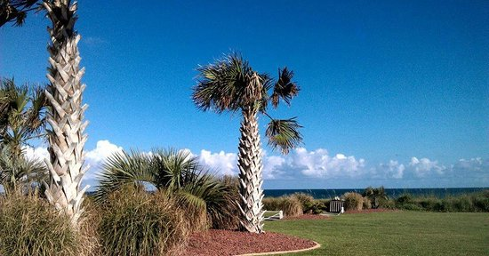 Islander Inn & Suites : Grounds in between parking area and beach access.
