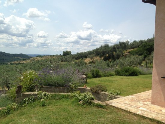 Podere Chiusa della Vasca: Relaxing view!