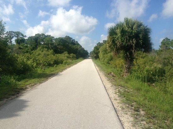 Legacy Trail: trails