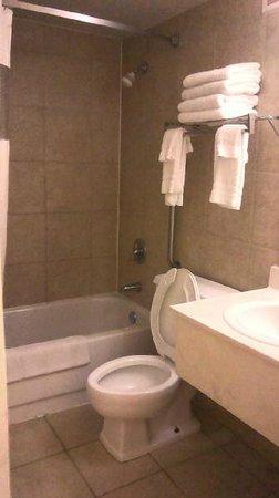 Howard Johnson Valdosta: Bathroom 2