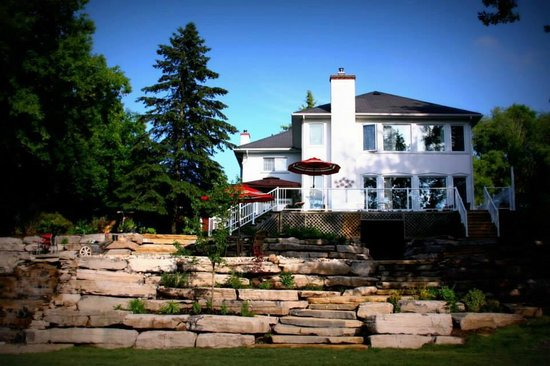 Daisy Hill Bed and Breakfast : Spacious landscaped backyard