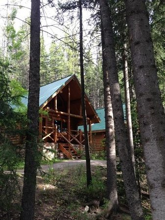Cathedral Mountain Lodge : our cabin