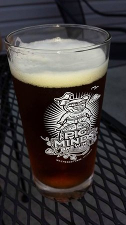 Pig Minds Brewing Co.: Death to Hopcore! 6.5% abv, Apricot infused with a variety of American Hops.