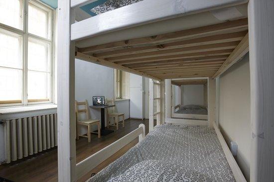 HoBar - the hostel bar : 8 bed Dorm interior