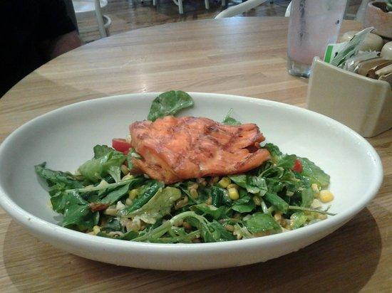 True Food Kitchen: Salmon