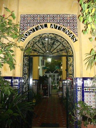 Hostal Atenas: ingresso
