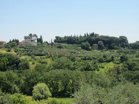 Agriturismo Marciano: View of Siena from the room
