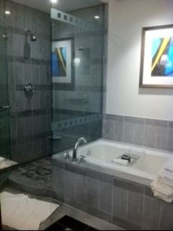 The Ritz-Carlton, Charlotte: bathroom