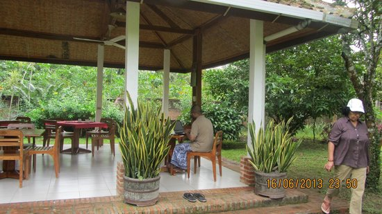Satwa Elephant Eco Lodge: working in the jungle