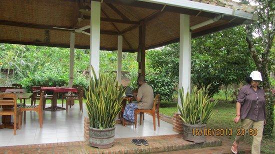 Satwa Elephant Eco Lodge : working in the jungle
