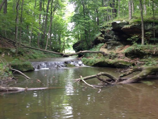 Rockmill Brewery: Headwaters of the Hocking River at the back of the property