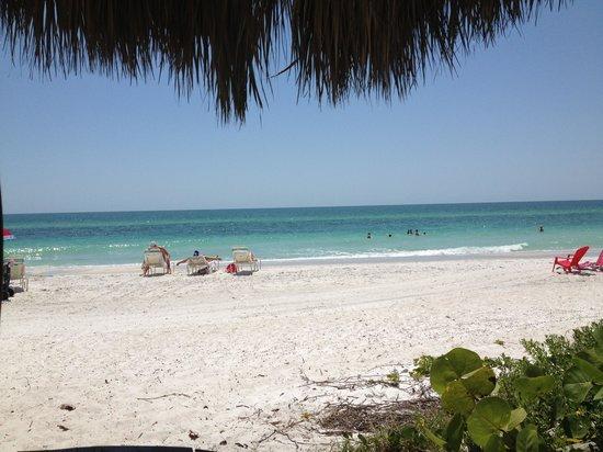 Anna Maria Island Inn: The beach!
