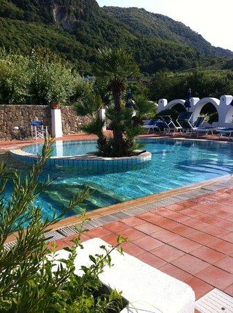 Poggio Aragosta Hotel & Spa : Piscina situata sulla terrazza!!