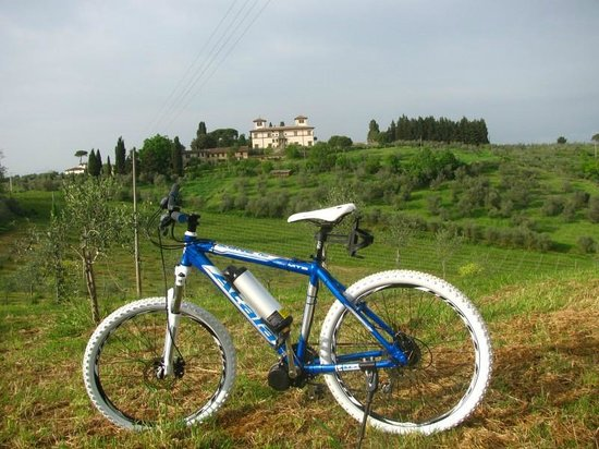 Io Svolto - Day Tours & Bike Rentals