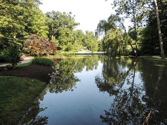 Edith J. Carrier Arboretum : View across the lake