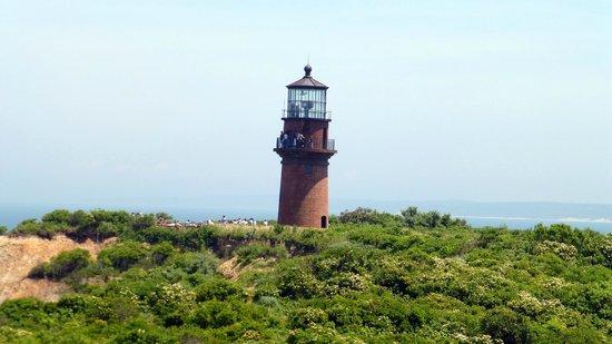 Martha's Vineyard Tours and Transportation: Lighthouse