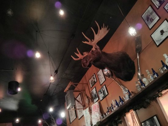 49th State Brewing Co: The decor is quirky!