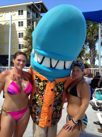 Salty, Hotel Blue's Pool Mascot