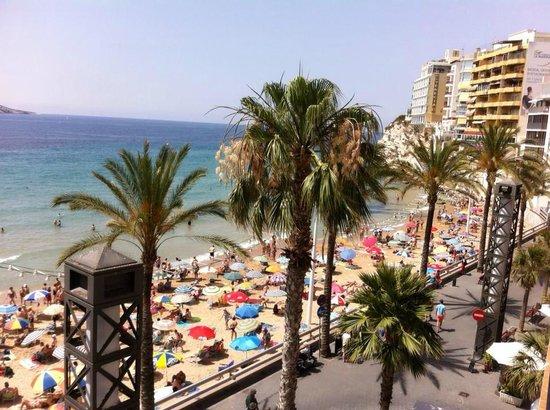Benidorm: From the hotel balcony