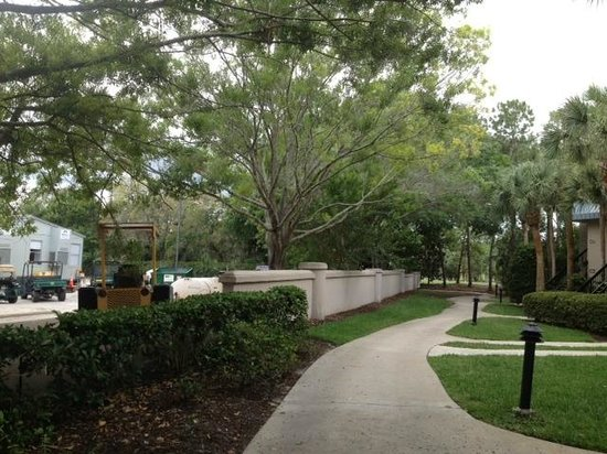 Marriott's Sabal Palms: Walkway to Room