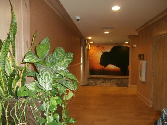 Hampton Inn and Suites Dodge City: Elevator Hallway