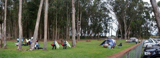 KOA Campground Santa Cruz North Costanoa - Allstays.com