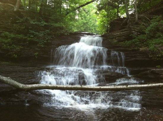Ricketts Glen State Park Campground: Falls