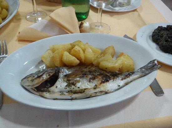 Hotel Maronti : cena