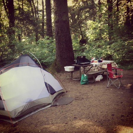 Beverly Beach State Park: Camping