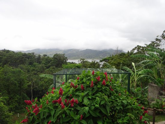 Toad Hall Hotel Arenal: View of Lake Arenal at Lunch