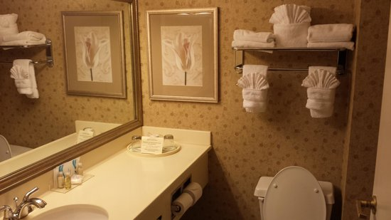 Wingate by Wyndham Atlanta Norcross: bathroom
