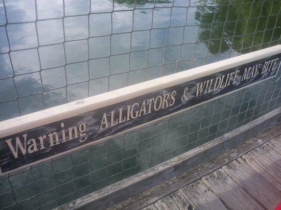Barefoot Landing: sign along bridge.  I didn't see any alligators