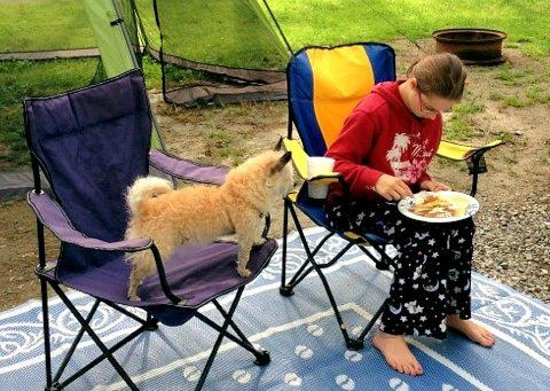 Jellystone Park of Western New York: Pancakes and eggs for breakfast.