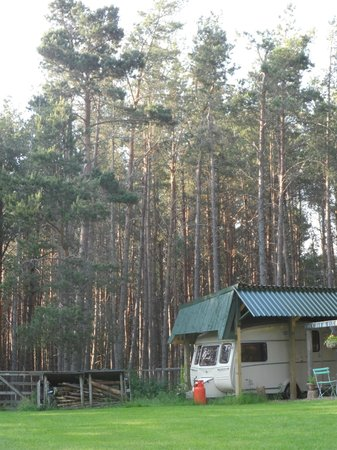 Lazy Duck Hostel, Eco Cabins & Lightweight Camping Ground: Campsite ground