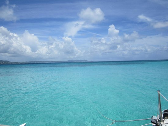 The Buccaneer St Croix: This is actually the view from Buck Island - a must snorkel trip