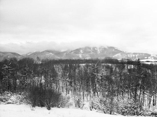 Blue Sky Cabins : Beartooth view